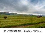 horses at mountain meadows ... | Shutterstock . vector #1129875482