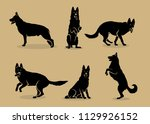 Stock vector set of german shepherd dog silhouettes isolated vector illustration 1129926152