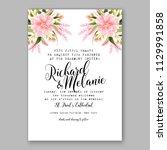 pink daisy dahlia chrysanthemum ... | Shutterstock .eps vector #1129991858