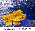 Yellow autumn leaf floating on water with rain. - stock photo