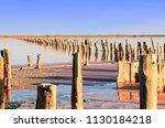 rose salt lake sivash....   Shutterstock . vector #1130184218