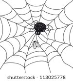 spider with a fly in a web.... | Shutterstock .eps vector #113025778