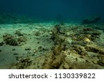 an old anchor chain on the... | Shutterstock . vector #1130339822