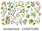 watercolor illustration.... | Shutterstock . vector #1130371385