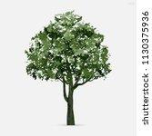 tree isolated on white... | Shutterstock .eps vector #1130375936