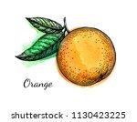 ink sketch of orange on... | Shutterstock .eps vector #1130423225
