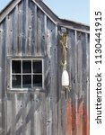 a weathered wooden shed in a...   Shutterstock . vector #1130441915