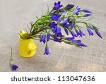 Bouquet of blue gentian in a  watering can against a canvas - stock photo