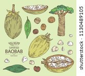 collection of baobab  baobab... | Shutterstock .eps vector #1130489105