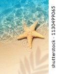 starfish on the summer beach in ... | Shutterstock . vector #1130499065