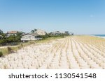 beachfront properties on long...   Shutterstock . vector #1130541548