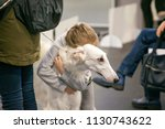 unrecognizable little girl hugs ...   Shutterstock . vector #1130743622