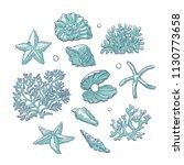 Vector Set Sea Shells Stars...