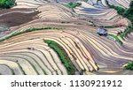 rice fields on terraced. fields ... | Shutterstock . vector #1130921912