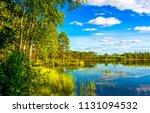 forest lake shore landscape in... | Shutterstock . vector #1131094532