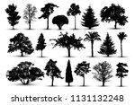 tree silhouette  forest vector. ... | Shutterstock .eps vector #1131132248
