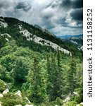 northern velebit national park... | Shutterstock . vector #1131158252