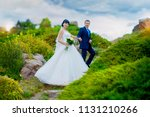groom holds hand of beautiful... | Shutterstock . vector #1131210266