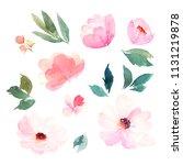 watercolor floral set. hand... | Shutterstock . vector #1131219878