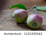 two small ripe apples on a... | Shutterstock . vector #1131330362