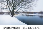 big tree on the bank of the... | Shutterstock . vector #1131378578