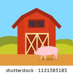pig in nature of farm ranch....   Shutterstock .eps vector #1131585185