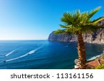 view of los gigantes cliffs.... | Shutterstock . vector #113161156