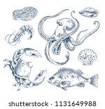 salmon steak and perch  shrimp...   Shutterstock .eps vector #1131649988