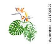 hand drawn watercolor green... | Shutterstock . vector #1131730802