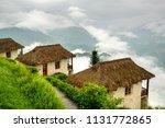 sapa  vietnam   august 2017....   Shutterstock . vector #1131772865