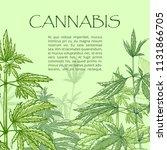 Cannabis Hand Draw Poster. Dru...