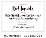 red tomato. handdrawn... | Shutterstock .eps vector #1131867215