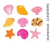 shell vector collection design | Shutterstock .eps vector #1131878492