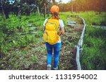 woman asian travel nature.... | Shutterstock . vector #1131954002