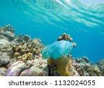 single use plastic shopping bag ... | Shutterstock . vector #1132024055