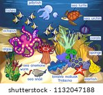 Ecosystem Of Coral Reef With...
