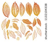 cacao beans plant  vector... | Shutterstock .eps vector #1132104338
