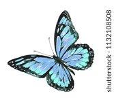 beautiful butterfly watercolor  ...   Shutterstock . vector #1132108508