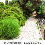 Fantastic Stone Path With...