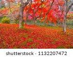 sakyoku ku  kyoto city in late... | Shutterstock . vector #1132207472