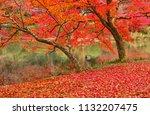 sakyoku ku  kyoto city in late... | Shutterstock . vector #1132207475