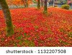 sakyoku ku  kyoto city in late... | Shutterstock . vector #1132207508