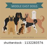 dogs by country of origin. near ... | Shutterstock .eps vector #1132283576
