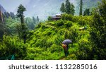 an old woman carrying woods in... | Shutterstock . vector #1132285016