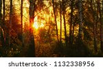 strong beautiful fog and... | Shutterstock . vector #1132338956