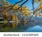 autumn at lake kochel or... | Shutterstock . vector #1132389305