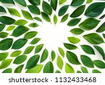 beautiful composition layout ... | Shutterstock . vector #1132433468