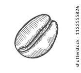 vintage coffee bean engraving... | Shutterstock .eps vector #1132555826
