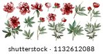 Stock photo watercolor illustration botanical collection of wild and garden plants set leaves flowers 1132612088
