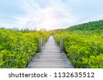 wooden bridge or walkway at...   Shutterstock . vector #1132635512